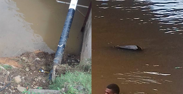 A Korovuto Nadi man dies after vehicle  veers into river  in sabeto.